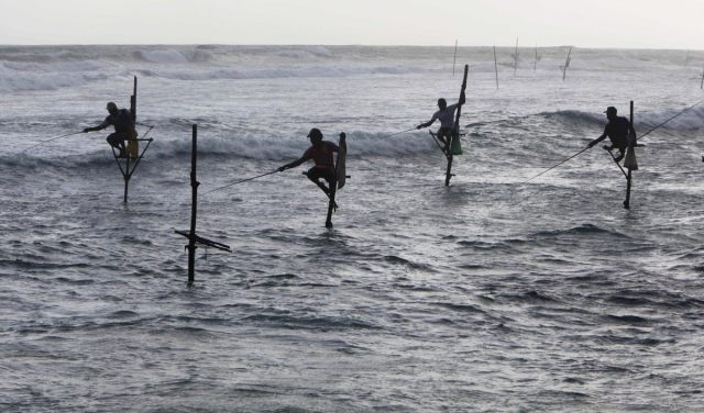 Sri Lankan stick fishermen attempt to catch fish in the late afternoon at Ahangama Bay, 25 kilometers (16 miles) south of Galle, Sri lanka, Tuesday, Aug. 10, 2010. (Mark Baker/AP)