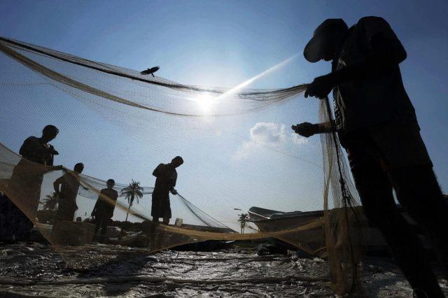 Sri Lankan fishermen sort their catch in a fishery harbor in Colombo, Sri Lanka, Tuesday, Feb. 25, 2014. (Eranga Jayawardena/AP)